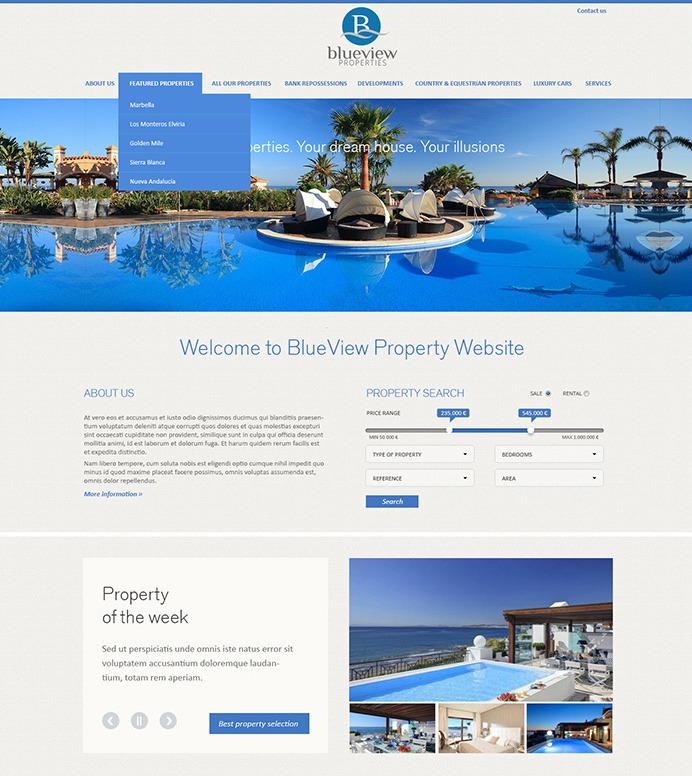 Web Design And Development Works In Marbella Costa Del Sol