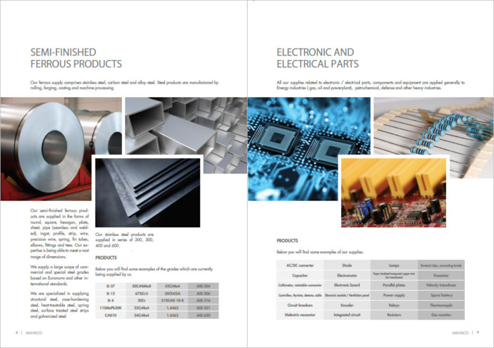 Interior graphic design for companies presentation brochure.