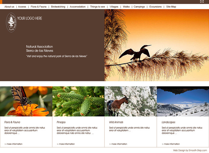 Nature web site example - Home page layout